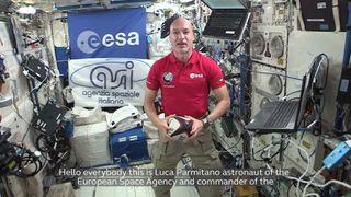 Italian astronaut Luca Parmitano and Sergio Parisse exchange messages