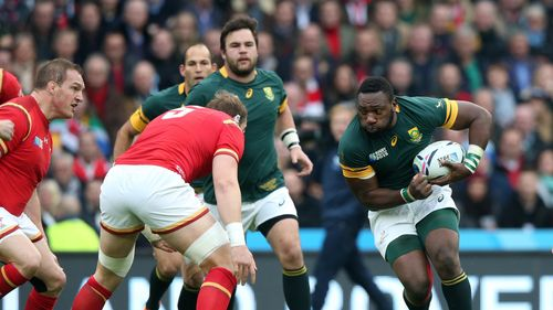 South Africa v Wales - Rugby World Cup 2015 quarter-final