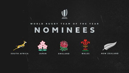 World Rugby Team of the Year 2019 nominees