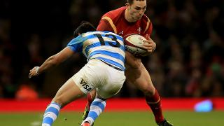 Wales v Argentina - International Match